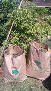 distribution sacs à dechets verts